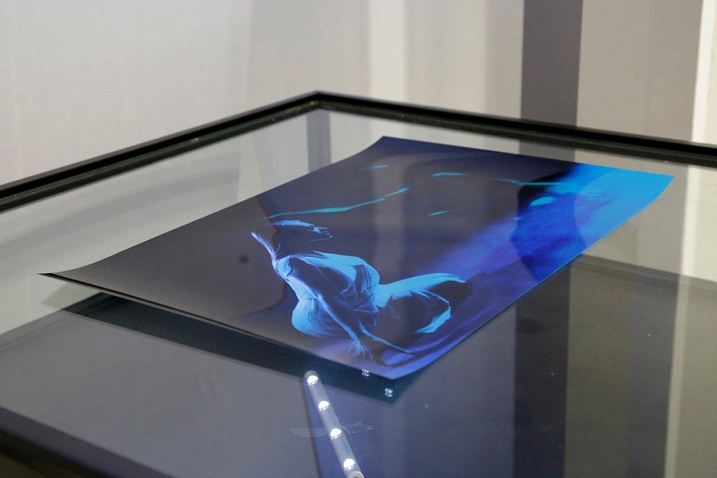 Metamorphosis, Galerie du Hall de l'Université Paris 8, Saint-Denis.