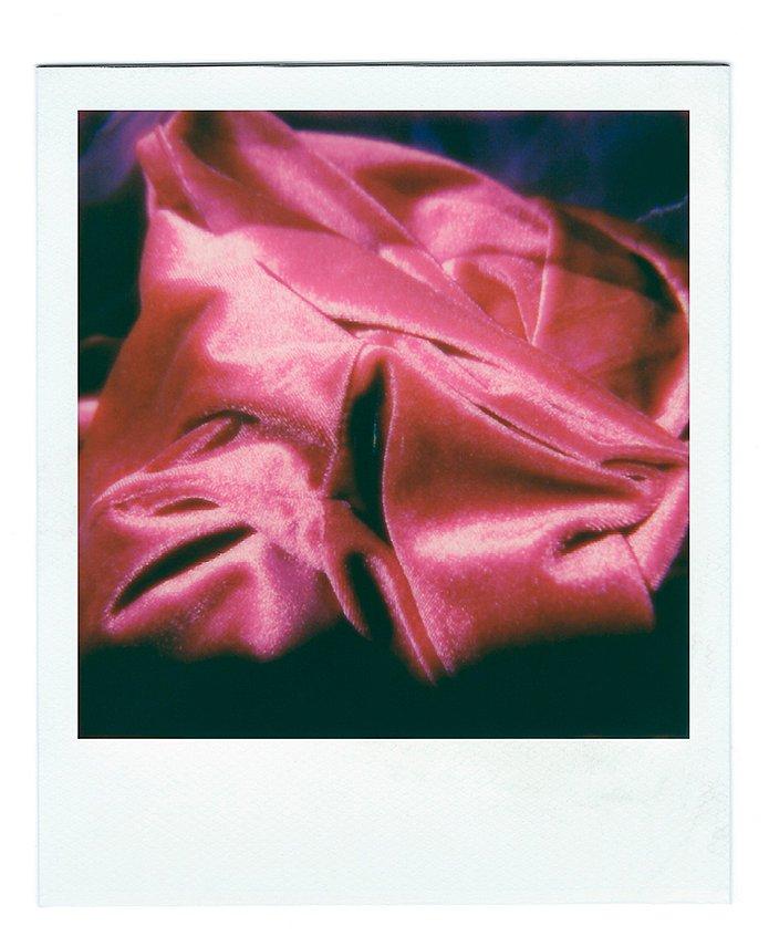 Rose intérieure 7